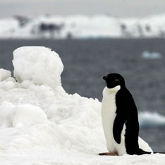 На Земле установлена самая низкая температура